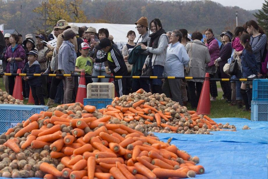 洞爺湖大秋獲祭|野菜つめ放題